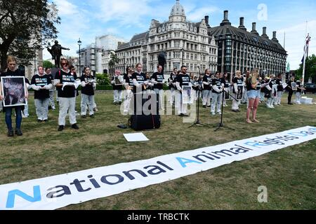 London, UK. 2nd June, 2019. Animal rights activists and supporters meet in Victoria Tower Gardens, before making a Silent march to Parliament Square for a static display of frozen dead animals. Quan Van/Alamy Live News - Stock Photo