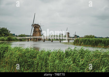 Canal with tall bushes, bridge and windmills on the bank at Kinderdijk. A polder with the largest concentration of old windmills in Netherlands. - Stock Photo