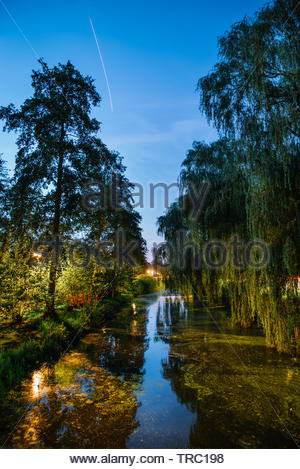 Beautiful evening, Netherlands. Trees and colorful plants in canal from the bridge, Amsterdam. - Stock Photo