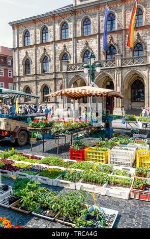 WEIMAR, GERMANY-MAY 24, 2019: Weekly market in the market square in front of the town hall. - Stock Photo