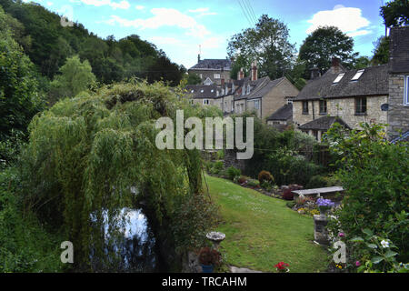 A weeping willow on the banks of the River Frome in Chalford, Gloucestershire. - Stock Photo