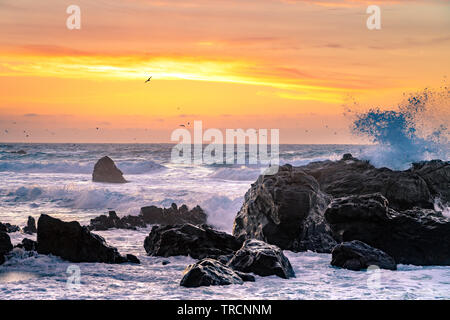 Big Sur, California - Beautiful sunset on a California beach with large waves crashing over rocks and a flock birds flying in the distance.