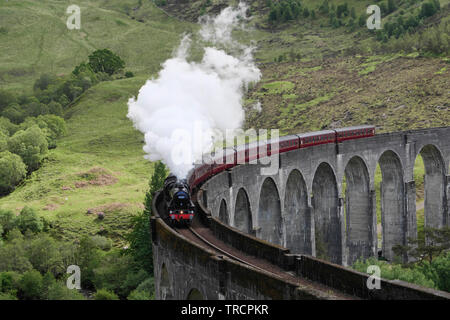 Steam train passing over the Glenfinnan Viaduct in the Scottish highlands - Stock Photo