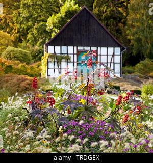 timpered house in the botanical garden Bielefeld in the late summer, Germany, North Rhine-Westphalia, East Westphalia, Bielefeld - Stock Photo