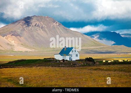 einsames Haus Hamraendar in der weiten Landschaft, Island, Snaefellsnes | solitary house in vast landscape, Iceland, Snaefellsnes | BLWS506480.jpg [ ( - Stock Photo