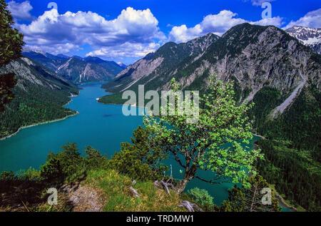 lake Plansee, Austria, Tyrol - Stock Photo