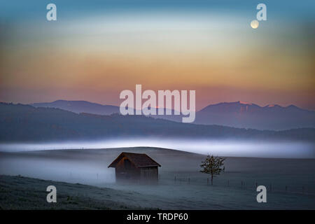 mountain landscape in morning mist near Murnau, Germany, Bavaria, Oberbayern, Upper Bavaria, Murnau - Stock Photo