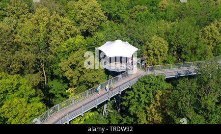 treetrop walk in National Park Hainich, Germany, Thueringen, Hainich National Park - Stock Photo