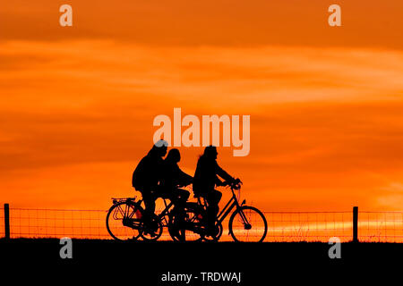 Cycling on a dike at sunset - Stock Photo