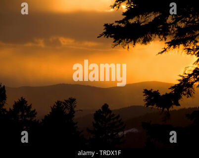 in winter at sunset, Germany, Bavaria, Bavarian Forest National Park Stock Photo