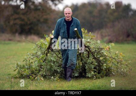 Forstarbeiter entfernt abgeschnittene Aeste, Niederlande, Overijssel | worker removing cutted branches, Netherlands, Overijssel | BLWS512856.jpg [ (c) - Stock Photo