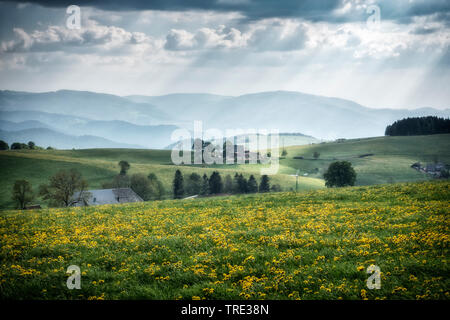 Schoener Ausblick im Schwarzwald, Deutschland, Baden-Wuerttemberg, Schwarzwald | beautiful view landscape in the Black Forest, Germany, Baden-Wuerttem - Stock Photo