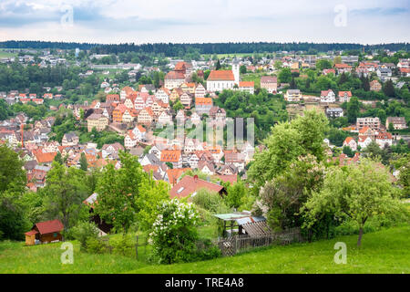 View of the histrorical town of Altensteig in the Black Forrest, Germany, Germany, Baden-Wuerttemberg, Black Forest, Altensteig - Stock Photo