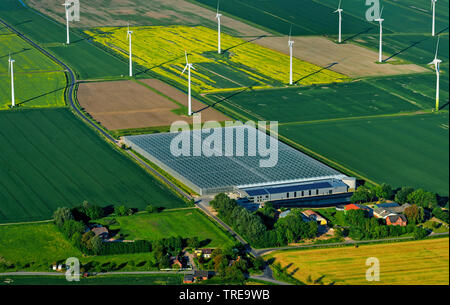 largest energy neutral bio greenhouse of Germany in Woehrden, wind wheels, aerial photo, Germany, Schleswig-Holstein, Kreis Dithmarschen - Stock Photo
