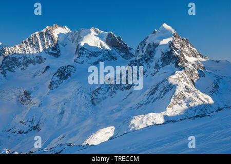 Biancograt with Piz Bernina-4049 m, Piz Scerscen - 3971 m, Piz Roseg-3937 m, Switzerland, Grisons, Oberengadin - Stock Photo