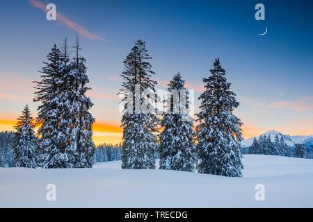sunset Alp Sellamatt, Switzerland - Stock Photo