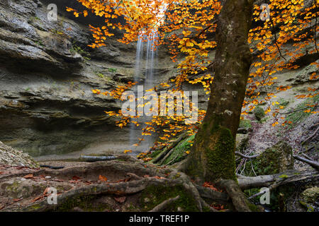waterfall in Paehler Schlucht in autum, Germany, Bavaria - Stock Photo