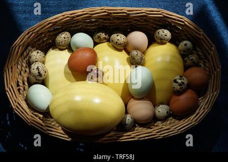 Basket full of eggs from various birds like nandu, hen, quail, araucana or naran. - Stock Photo