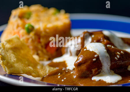 Chicken with mole Poblano sauce and Mexican rice, traditional specialty of Oaxaca and Puebla. Food, restaurants, menus, Mexico, travel, tradition. Cop - Stock Photo