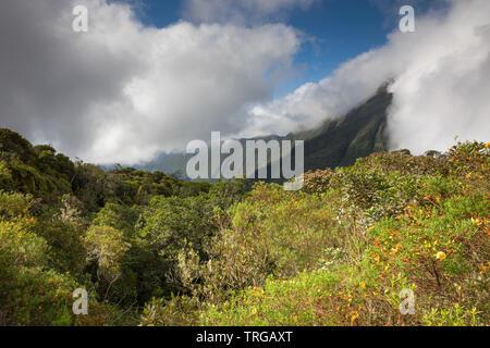 The Col de Boeuf, Réunion Island, France - Stock Photo