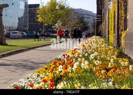 People walking in the street with beautiful flowers in the city of Copenhagen, Denmark - Stock Photo