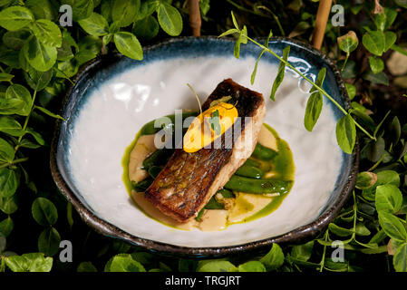 white fish steak on a plate - Stock Photo