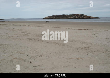 Salt Island is only 5 acres and is located just off the shores of Good Harbor Beach in Gloucester, Massachusetts USA. You can walk to it in low tide. - Stock Photo