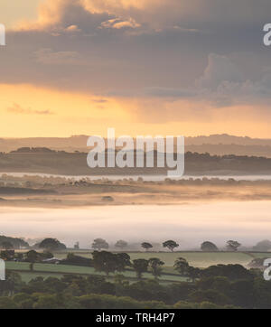 Marshwood Vale, Dorset, UK. 6th June 2019. UK Weather: A layer of mist rises above the luscious green fields of the Marshwood Vale on a summer morning as an ominous weather front brings a day of sunshine and scattered rain showers in the South West. Credit: Celia McMahon/Alamy Live News. - Stock Photo