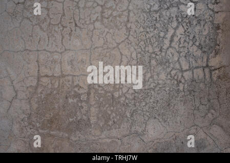 Cracked patterns concrete wall texture background. Unpainted & untreated grunge cement surface with crack lines like blood vessels - Stock Photo