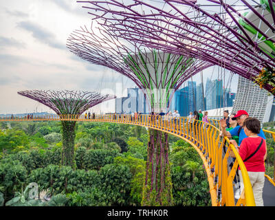 Tourists on the elevated walkway OCBC Skyway between two of the Supertrees  in the Supertree Grove at Gardens by the Bay Singapore.