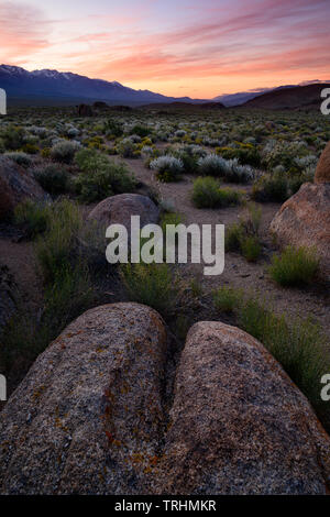 The famous Alabama Hills near Lone Pine, California just below Mt. Whitney in the Eastern Sierra's. - Stock Photo