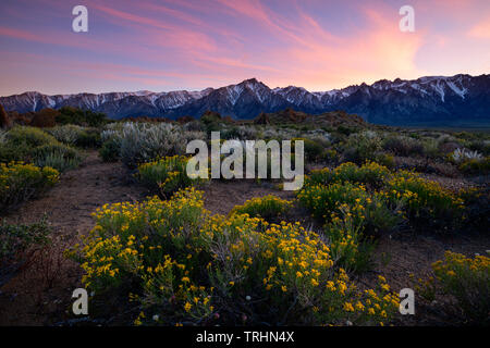 Sunset at the famous Alabama Hills near Lone Pine, California just below Mt. Whitney in the Eastern Sierra's. - Stock Photo