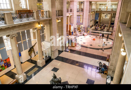 Foyer of National Museum of Wales, Cardiff, Wales - Stock Photo
