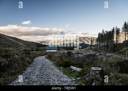 autumn Nizke Tatry mountains scenery above Jasna resort in Slovakia with forest devastated by timber harvesting, trail and hills on the background - Stock Photo