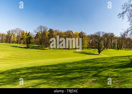 fresh spring grass on golf course with trees on the background and clear sky near Silherovice chateau not far from Ostrava city in Czech republic - Stock Photo