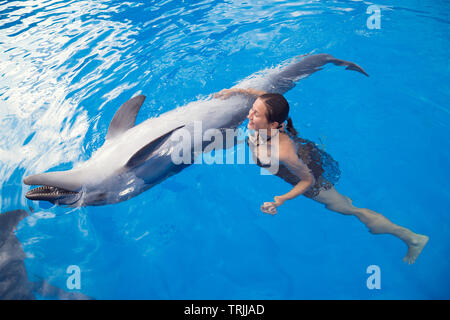 Happy beautiful young girl laughs and swims with dolphins in blue swimming pool on sunny day - Stock Photo