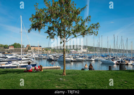 Oslo Marina, view in summer of yachts and boats moored in the marina of Oslo city harbor (Aker Brygge), Norway. - Stock Photo