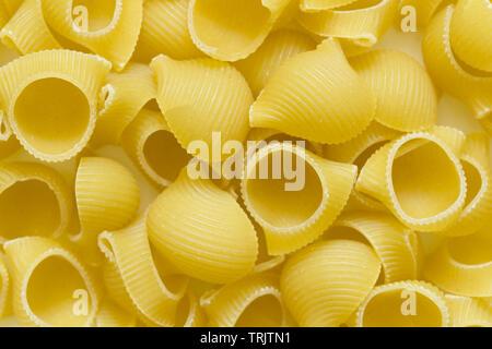 Raw uncooked dry Conchiglioni italian pasta. shells shaped - Stock Photo