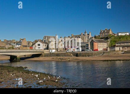 Town of Wick, Caithness Scotland with buildings huddled beside River Wick and arched bridge, with seagulls in foreground, under blue sky - Stock Photo
