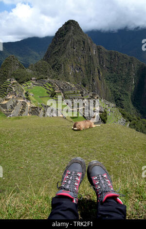 Hiking boots on the grass with a llama and the famous travel destination Machu Picchu in the background - Stock Photo