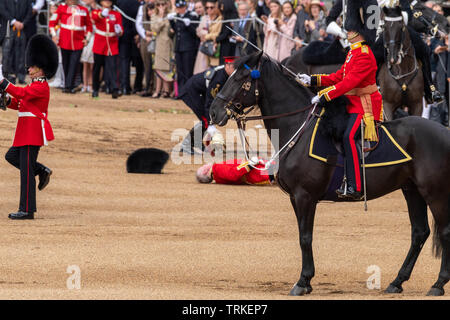 London, UK. 8th June 2019 Trooping the Colour 2019, The Queen's Birthday parade on Horseguards Parade London in the presence of Her Majesty The Queen.  Colour trooped by the 1st Battalion Grenadier Guards  A Guards office Major Niall Hall, of the Regimental Adjutant of the Irish Guards, came off his horse in the parade Credit Ian Davidson/Alamy Live News - Stock Photo