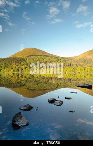 Spring time reflections of woodland and fells at Loweswater