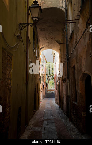 Picturesque narrow alley with an antique street light and a tree on the other end. Albenga, Liguria, italy.