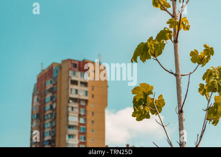 contrast between nature and cities - Stock Photo