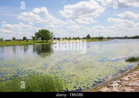 City Jelgava, Latvian Republic. River Lielupe, people sunbathing on the river bank. Jun 9. 2019. Travel photo. - Stock Photo