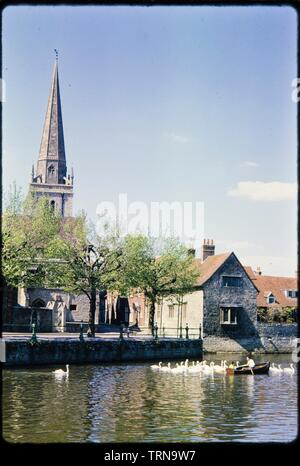 St Helen's Wharf, Abingdon, Oxfordshire, c1960s. A view looking north across the River Thames from the north-western shore of Andersey Island, towards St Helen's Wharf, East St Helen Street and St Helen's Church, with a rowing boat surrounded by swans on the river. - Stock Photo