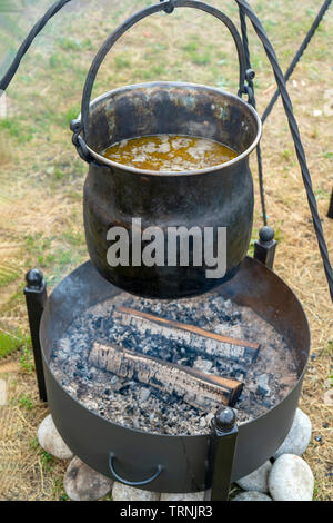 Food is cooked in a pot on the fire. - Stock Photo