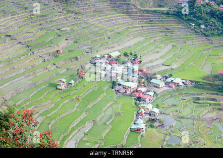 Batad rice terraces, near Banaue, Philippines - Stock Photo