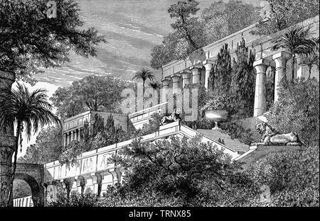 Ancient World Babylon Architecture Babylonian Temple