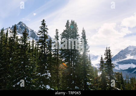 View south of sun beams through snowy trees and mountains from Peyto Lake overlook in Banff National Park, Alberta, Canada - Stock Photo